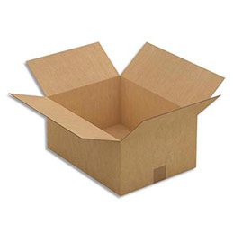 Caisse carton brune - simple cannelure - 40 x 18 x 30 cm - lot de 25 (photo)