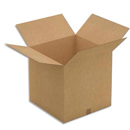 Caisse carton brune - simple cannelure - 50 x 50 x 50 cm - lot de 20 (photo)