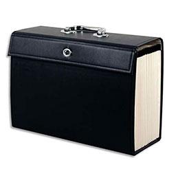 valisette trieur simili cuir 20 compartiments noir achat pas cher. Black Bedroom Furniture Sets. Home Design Ideas