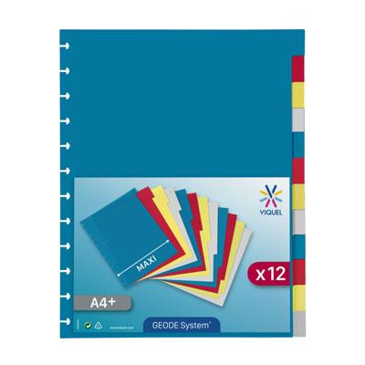 Intercalaires Viquel Géode - 12 divisions - polypropylène - coloris assortis