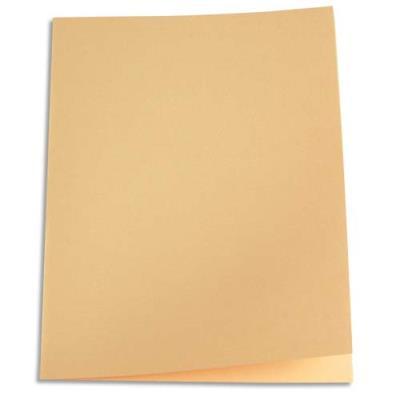 Paquet de 250 sous-chemises en papier recyclé 60 grammes - coloris bulle