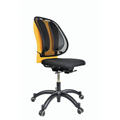 Support dorsal pour chaise de bureau Fellowes (photo)