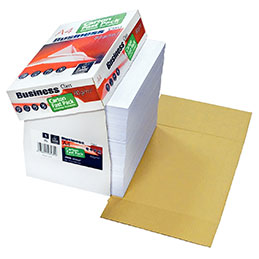 Papier - blanc - 80 g - A4 - box de 2500 feuilles (photo)