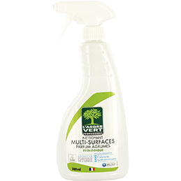 Nettoyant multi-surfaces E Protec -spray 740ml (photo)