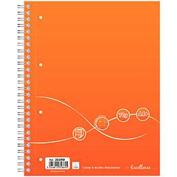 Cahier à reliure intégrale Excellence - A4+ - 160 pages - quadrillé 5x5 - 70g (photo)