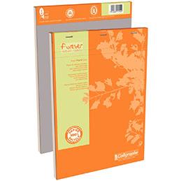 Bloc de bureau recyclé Clairefontaine - A4 - 100 feuilles micro-perforées détachables - 70g - réglure 5x5 (photo)