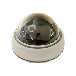 Caméra dôme factice intérieure (photo)