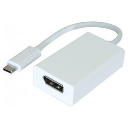 Adaptateur USB 3.1 Type-C vers DisplayPort 1.2 (photo)