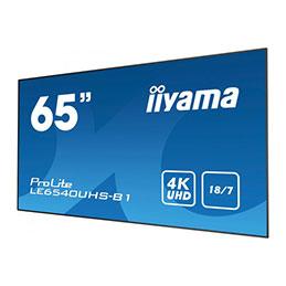 IIYAMA afficheur professionnel 65