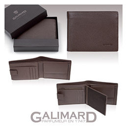 Portefeuille cuir executive Galimard (photo)
